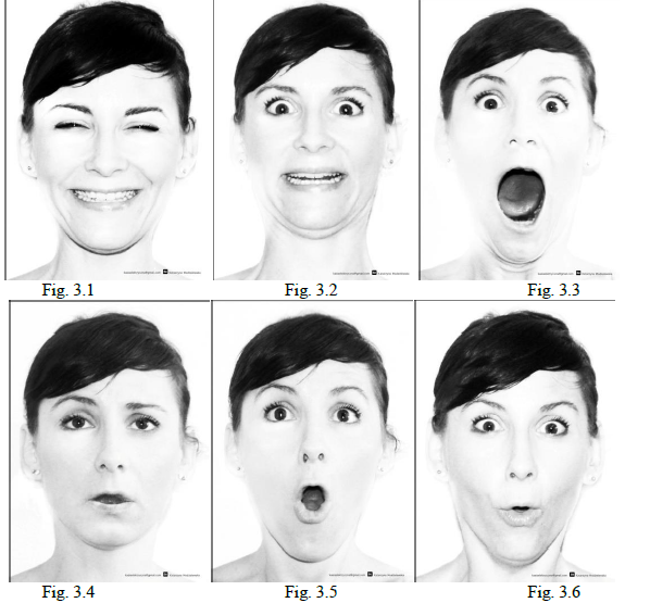 Facial Expressions in Nonverbal Communication: